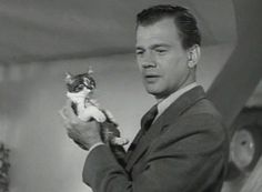 Joseph Cotten picks up a kitten in a mysterious girl's apartment in Love Letters (1945).