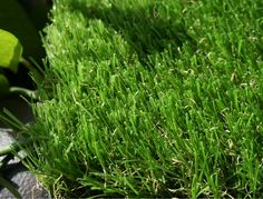 WF-U #LandscapeGrass #ArtificialGrass