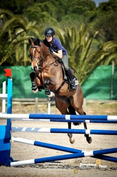 z- Horse Jumping- Woman, left, dark (Laura Renwick)