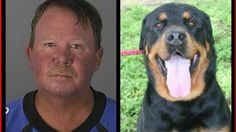 New Port Richey, Florida Lawmakers/Law Enforcement/City Council: Stiffer Penalties for Dog Killers