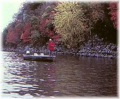 Robert S. Kerr Lake, OK - The lake area is beautiful any time of the year. It is especially scenic when flowering shrubs and. Oklahoma Lakes, Flowering Shrubs, Time Of The Year, Rivers, Childhood, Fish, Sweet, Travel, Beautiful