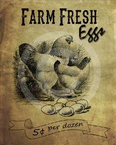 Primitive Farm Fresh EggsPrintable Digital by HoneyBeePrintables, $3.00