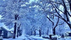 arrowtown village snow - Google Search