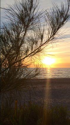 My sunset!  Englewood Beach, Florida