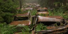 These spooky apocalyptic images are not a scene from Walking Dead, they were actually taken at one of the biggest car cemeteries in the world – the Chatillion Car Graveyard, Belgium. According to an urban legend these cars were left behind by US soldiers from World War II, who could not ship them back to the US so they decided to hide them in a forest until they could come back and retrieve them.