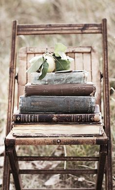 Antique books, vintage chair, beautiful object of nature = sublime