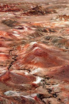 Gobi Desert   Mongolia (by Marc Guitard)