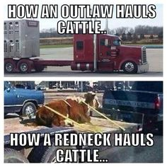 255 Best Trucking Humor Images In 2019 Big Rig Trucks