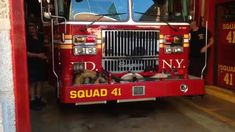 FDNY SQUAD 41 RESPONDING IS BEING BLOCKED BY A STUPID ASS ILLEGALLY PARK...