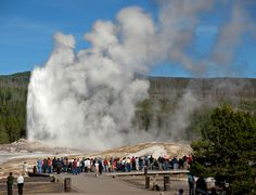 "To say ""scenic,"" and ""Yellowstone National Park"" are synonymous is an understatement. Old Faithful Geyser"