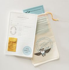 tooth fairy kit #toothfairy #tooth