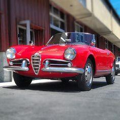 #1957 #alfa #alfaromeo #giulietta #spider #barnfind #original #vintage #classiccar #italian #pininfarina #design #milano #disegno » @northwestautosalon » Instagram Profile » Followgram