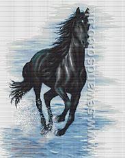 Buy Black Horse Cross Stitch Kit Online at www.sewandso.co.uk