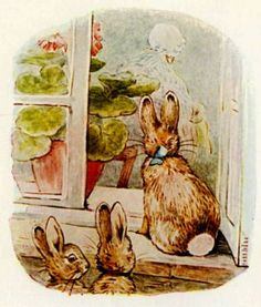 looking in. The Tale of the Flopsy Bunnies.