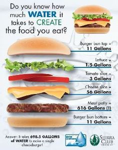 How much water it takes to create a cheeseburger. Poster by Michelle Theis, Angeles Chapter, Sierra Club
