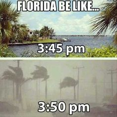 Funny pictures about Weather In Florida. Oh, and cool pics about Weather In Florida. Also, Weather In Florida photos. Lol, Mantra, Florida Weather, Funny Weather, Miami Weather, Weather Jokes, Florida Girl, Florida Living, Hilarious Pictures