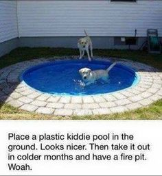 Dog Pool – DIY Idea. We found this very cool (pardon the pun)  idea for a dog pool you can build in your backyard courtsey of the Money Pit. Take a look at how they built it. They placed a kiddie pool (Pet Diy Ideas)