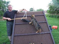 http://www.dogcenter-k9.com/wuerfe/wuerfe1.html