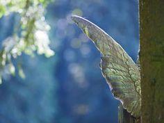 Gibt es wirklich Engel in unserem Leben?