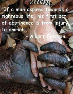 If a man aspires...