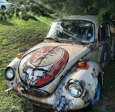 Stealie Bug decay beauty!