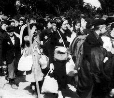 holocaust suffering