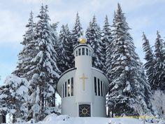 Wolf, Berg, Austria, Snow, Outdoor, Communities Unit, City, Outdoors, Wolves