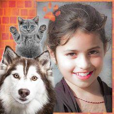Montajes con gatos y perros