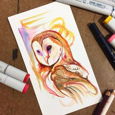 One last extra special Barn Owl sketch Thank you for sticking with me through all of the owl craziness