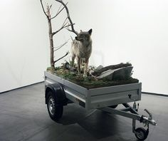 """Mark Dion, """"Mobile Wilderness Wolf Unit"""", 2006"""