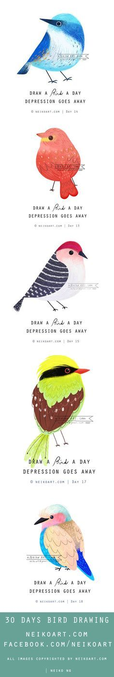 30 days bird drawing!! http://facebook.com/neikoart for all the birds!