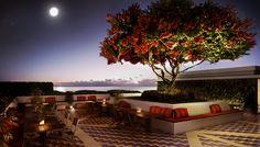 Apartamentos en Miami - APOGEE- Torre de alta gama frente al mar torres alta gama