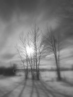 It's a beautiful cold winter day in Bozeman, Montana today!!!   Winter Solstice Photography Cards set of 4 blank by courtneygrigg, $11.00