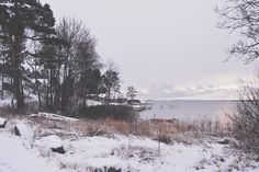 Winter crush (all of the things that I once loved) | Rygge, NO