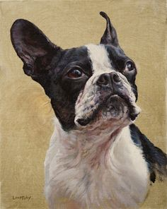 Boston Terrier Painting - Heather Lenefsky Art Art Commissions, Photo Pattern, Pet Portraits, Boston Terrier, Illustration Art, Fine Art, Patterns, Pets, Artwork