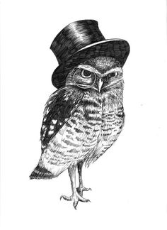 ANY 3 Owl Prints Pen and Ink Print 5x7 Postcard por henny2pence