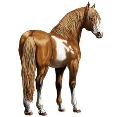 Nézd a bemutatóm :), Sportló Arab telivér Sárga #395149 - Howrse
