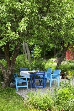 Puutarhan kauniit puut | Viherpiha