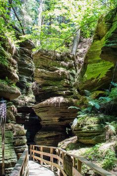 Only accessible via the Upper Dells Boat Tour you'll find Witches Gulch, a stunning narrow canyon full of nature and located in the Dells of the Wisconsin River State Natural Area. Wisconsin Vacation, Vacation Trips, Vacation Spots, Vacation Ideas, Wisconsin River, Wisconsin Dells, Baraboo Wisconsin, Lake Michigan, Places To Travel