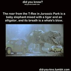 If there was a Jurassic park ...That would be exciting and nerve wrecking at the same damn time!