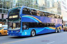 New York City bus Express Bus, Bus Coach, Public Transport, Gta, Buses, New York City, American, School, Vehicles
