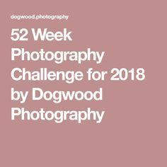 52 Week Photography Challenge for 2018 by Dogwood Photography