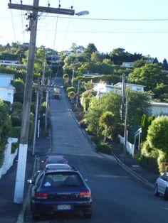 Baldwin Street, the steepest street in the world - Dunedin