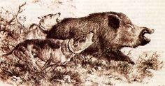 pintores animalistas - Buscar con Google