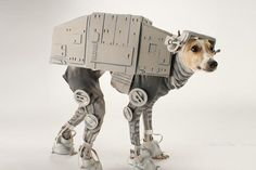 Dressing up your dog hits a new low.