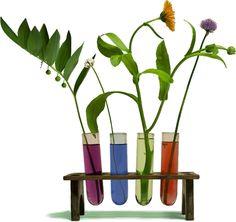PUR Hyvinvointikauppa on Helsingin Kampissa sijaitseva kokonaisvaltaiseen hyvinvointiin keskittynyt myymälä. Valikoimastamme löydät niin homeopaattisia kuin atroposofisia valmisteita sekä tarkoin valittuja luonnollisia ravintolisiä, luomu elintarvikkeita sekä luonnonkosmetiikkaa.