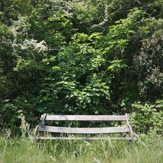 A quiet place to sit. Oh to have more of those... #folkandstory