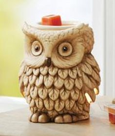 Better Homes and Garden Full Size Warmer, Forest Owl                                                                                                                                                                                 More