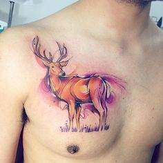 Cierv AB #tattoo #tatuaje #watercolor #animal #aquarela #ciervo #venado #deer #deertattoo #colors