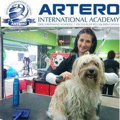 Fórmate en Peluquería Canina y acredita tus estudios con Artero International Academy con Profesorado Experto en Peluquería Canina 93 515 00 35 / Visítanos en arteroacademy.com Disponemos de centros en varias ciudades de España.